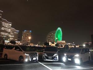ヴェルファイア AGH30W のカスタム事例画像 やぎちゃんさんの2019年11月22日09:28の投稿