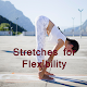 Stretches for flexibility Download on Windows