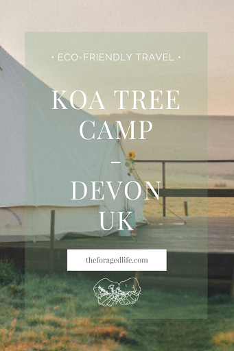 A bell tent at Koa Tree Camp - Devon, UK // Eco-Friendly Travel by The Foraged Life