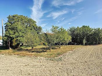 terrain à Gizaucourt (51)