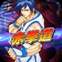 Kung Fu Do Fighting 3.9