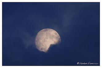 Photo: Mystischer Mond / Luna