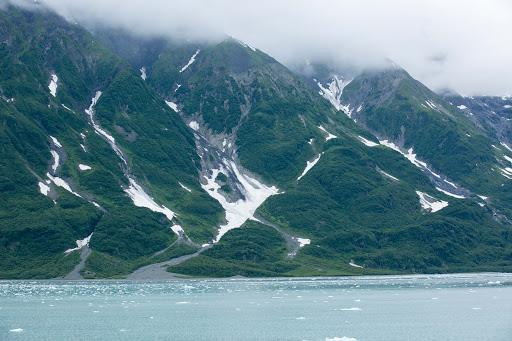 Greenery interspersed with snow on Hubbard Glacier in Alaska.