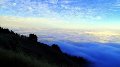Photo: On Ridgecrest Road Mt. Tam, above the marine layer cloud deck