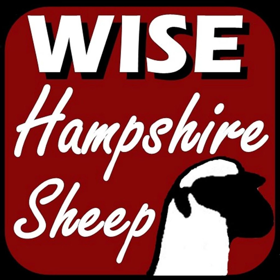 Wise Hampshire Sheep- screenshot