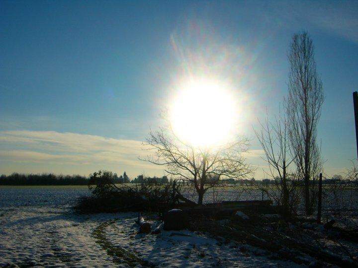 Le radici del sole di ytse_jam