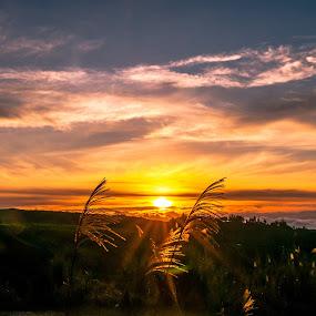 Good Morning by Ted Khiong Liew - Landscapes Sunsets & Sunrises ( #sunrises )