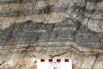 Photo: This formation has tilted almost 90 degrees since it was deposited.  The small projections in the dark layers indicate which way was up when the deposition occurred.