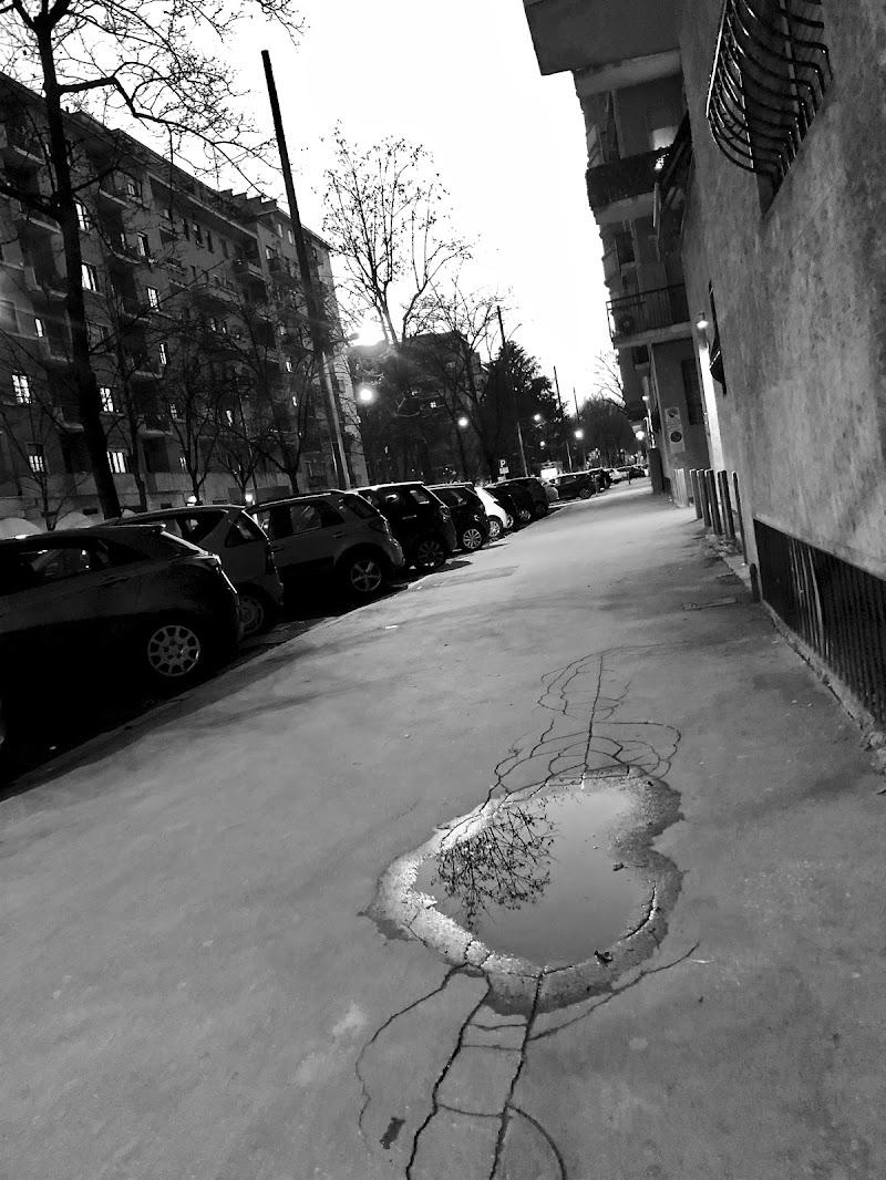 Milano che suona in silenzio di giorgia_sat