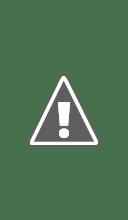 Photo: Джанни Франчецетти открывает конференцию