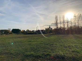 terrain à Les Montils (41)
