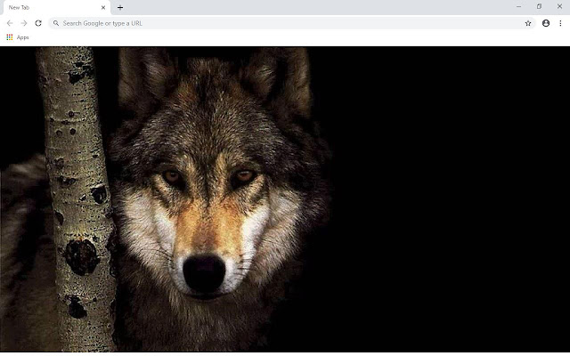 Wolf Wallpapers and New Tab