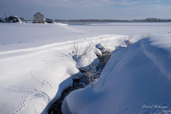 川辺の雪布団