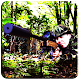 Commandos Adventure Strike