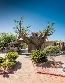 Magic Robin Hood Sports, Water Park & Medieval Lodge Resort