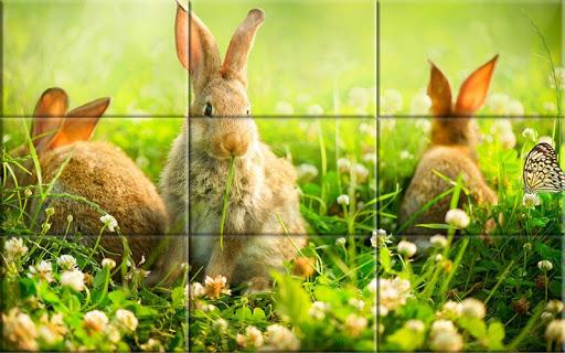 Puzzle - Cute bunnies screenshots 2