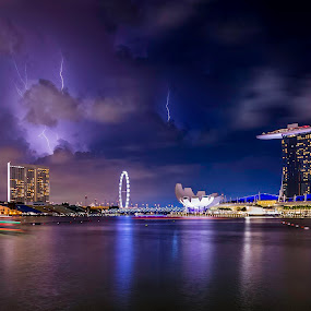 when the lights of Nature meets city lights by Binoy Uthup - City,  Street & Park  Night ( lightening, night lights, nightview, travel, cityscape, nightshoot, singapore, city, nightscape, night photography, night view, long exposure, night, longexposure, night sky, city at night, street at night, park at night, nightlife, night life, nighttime in the city )