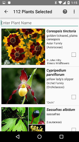 android Arkansas Wildflowers Screenshot 1