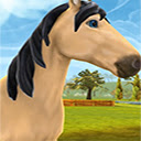 Horse Riding Tales Wallpapers HD