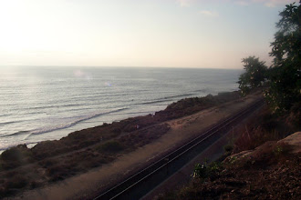 Photo: One of the attractions of this site is the train; every now and then the Los Angeles to San Diego (or the other way around) Amtrak comes by. It prompts thoughts about journeys, and about how life itself is an episodic journey. All very metaphorical.