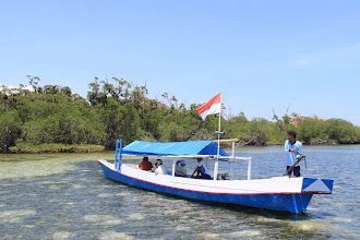 Photo: Fisherman boats are available for rent at the nearby harbor for island hopping. One of the boats insisted to float closer to the fruit bat island. The island is accessible only at noon during the high tide. http://www.indonesia.travel