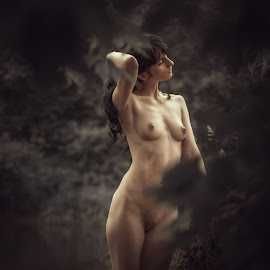 Nymph Fairy Forest by Dmitry Laudin - Nudes & Boudoir Artistic Nude ( body, nude, girl, foliage, beautiful, forest, darkness, light, nymph )