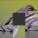 Birds Image Slide Puzzle