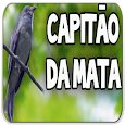 Canto do Capitão do Mato