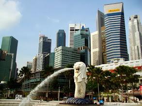 Photo: 022-Le Melion et les tours de Singapour