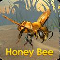 Honey Bee Simulator icon
