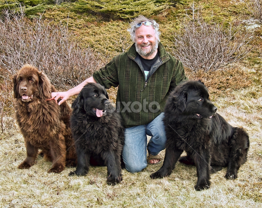 A Man And His Dog >> A Man And His Dogs Portraits Animals Dogs Pixoto
