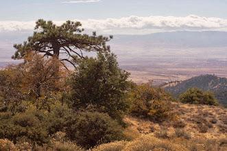 Photo: Antelope Canyon - M. White