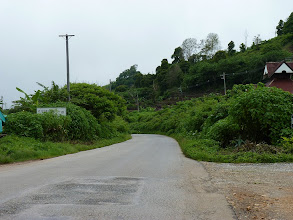 Photo: road Mae Sariang to Chiang Mai - bushes next to road almost everywhere, difficult to see anything or take photos