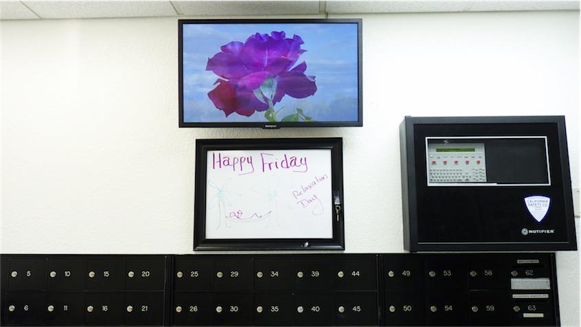 Mailroom TV.jpg