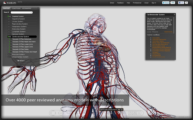 Biodigital Human Chrome Web Store