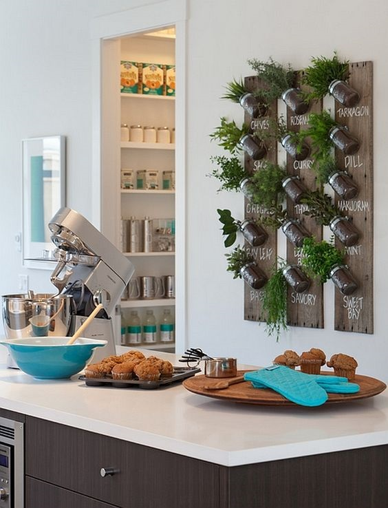 decorando as paredes com especiarias e vegetais pendurados