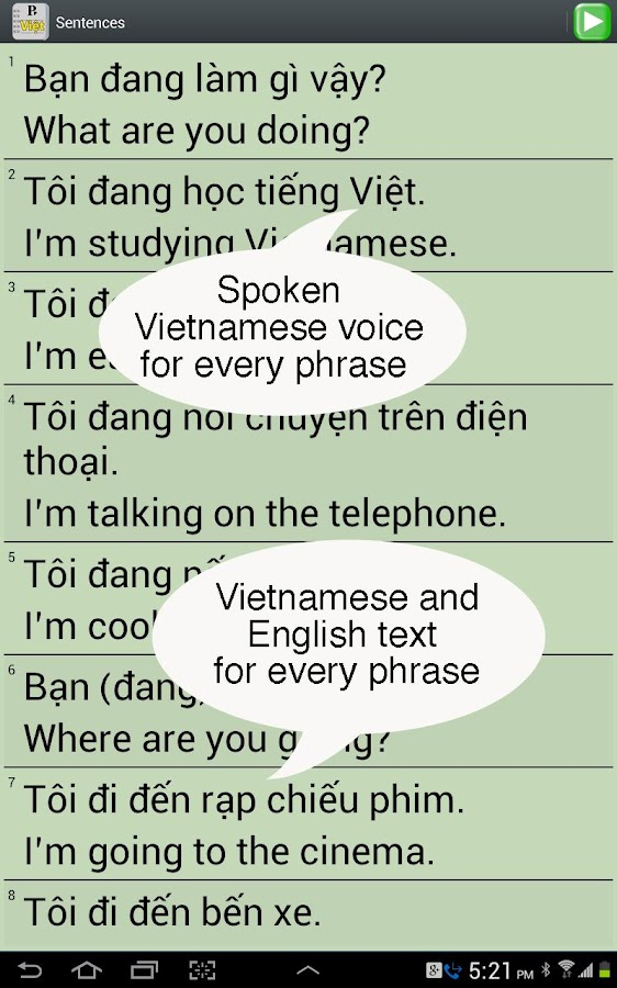 Vietnamese for Beginners- screenshot