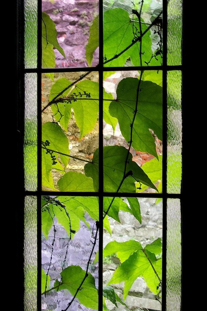 Oltre il vetro di renataco58