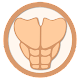 Abs in 30 Days - Abdominal Workout Android apk