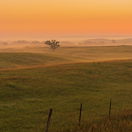 Early Morning  by Jeff Brown - Landscapes Prairies, Meadows & Fields ( sunrise, feild, meadow, morning )