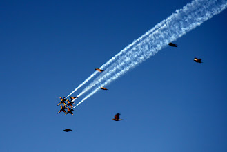 Photo: We arrived just in time to see the Blue Angels at Fleet Week