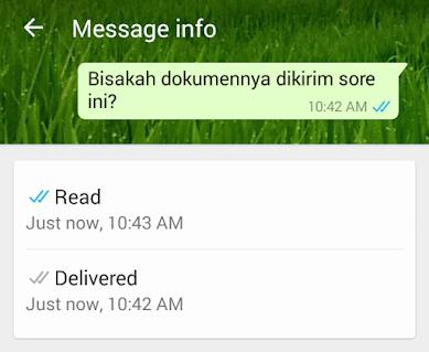 Message Info