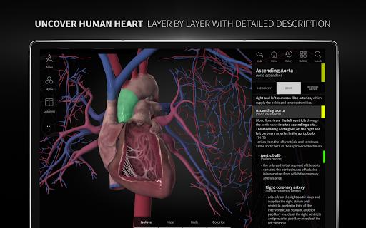 Anatomyka - 3D Human Anatomy Atlas 1.8.5 screenshots 12