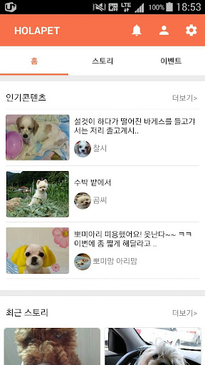 올라펫 강아지 고양이 반려동물 커뮤니티