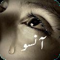 Sad Poetry - Urdu Lines icon