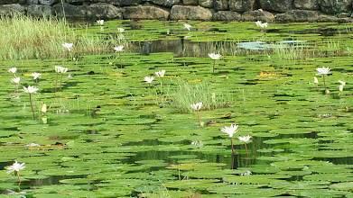 Photo: Sigiriya - (c) wsylvie.free.fr