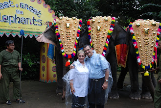 Photo: We tried to dress up like the elephants (no, it was drizzling that day)