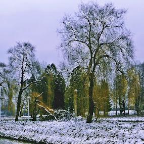 Migalovci by Bojan Dobrovodski - City,  Street & Park  City Parks ( migalovci park slavonski brod chanell )