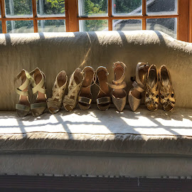 Bridesmaid shoes by Patti Pappas - Wedding Getting Ready ( shoes, couch, jewel, wedding )