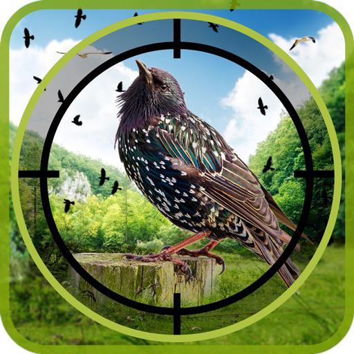 Birds Hunter in Jungle
